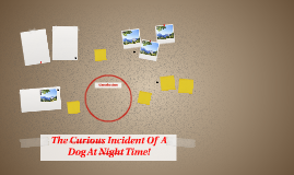 The Curious Insident Of A Dog At Night Time!