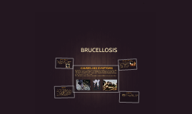BRUCCELLOSIS
