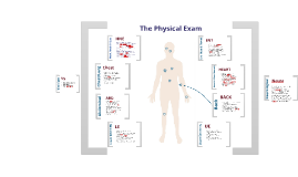 Copy of Physical exam