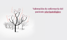 Valoración de enfermería del paciente pluripatológico