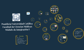 Pontificia Universidad Catolica