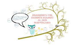 SEGUIMIENTO DEL PACIENTE AL ALTA HOSPITALARIA