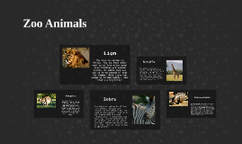 Copy of Zoo Animals