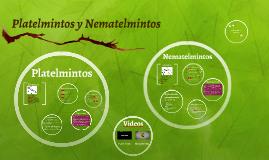 Copy of Platelmintos y Nematelmintos