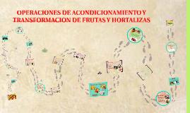 Copy of Copy of Operaciones de acondicionamiento de frutas y hortalizas