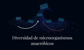 Diversidad de microorganismos anaeróbicos