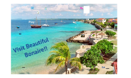 Vacation Research Project:  Trip to Bonaire