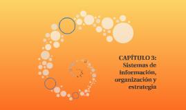 CAPÍTULO 3: Sistemas de información, organización y estrateg