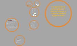 La organización de las actividades en Atención Primaria: el