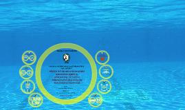 1.-Efecto del modelo de Educación Deportiva sobre sobre el aprendizaje técnico y variables psicológicas en nadadores federados