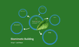 Biomimetic Building