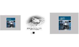 Eholokacija Šišmiša_ultrazvuk