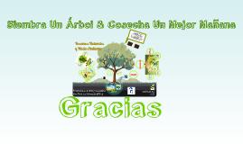 Recursos Naturales & Medio Ambiente