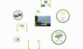 Parque Natural de Oyambre - Ecologistas en Acción
