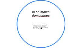 lo animales domesticos