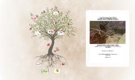 Copy of Jordânia