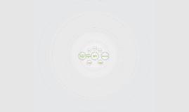 Estructura simple de la SPV