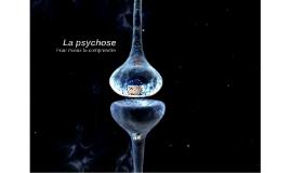 La psychose- pour mieux la comprendre