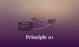 Principle 10