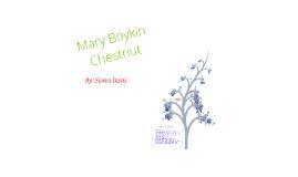 Civil War Author Mary Brooklyn Chestnut