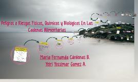 Copy of Peligros y Riesgos Fisicos, Quimicos y Biologicos En Las Cad