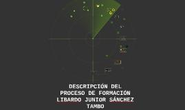 DESCRIPCIÓN DEL PROCESO DE FORMACIÓN