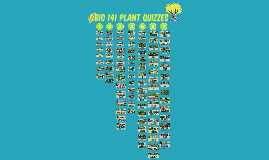 50 Plants for Final: Bio 141 Plant Quizzes Fall 2013 Semester