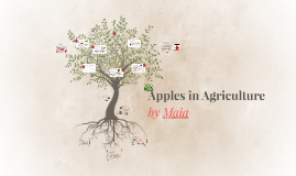 Apples in Agriculture