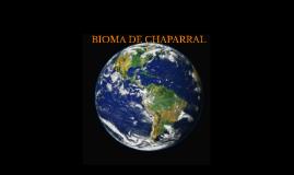 Bioma del Chaparral