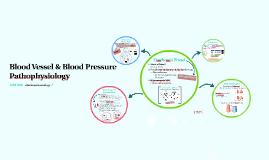 Blood Vessel & Blood Pressure Pathophysiology