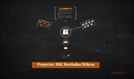 Proyecto Final: Bordados Milena