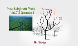 Geoactive 1 - How rainforests work (Unit 7.3)
