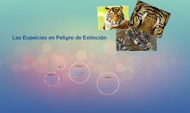 Las Espeicies En Peligro De Extinction