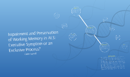 Working Memory in the MND's