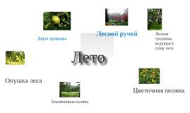 Copy of Лето