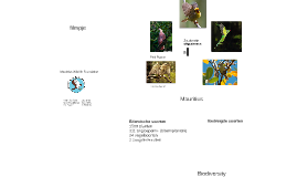Copy of Mauritius Wildlife Foundation