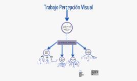 Copy of Trabajo Percepción Visual