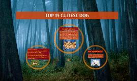 TOP 15 CUTIEST DOG