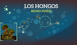 Copy of LOS HONGOS