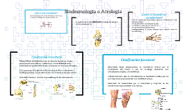 Sindesmología o Atrología