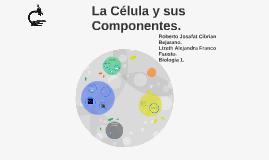La Celula y sus componentes