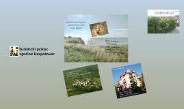 Turisticki prikaz opstine Despotovac