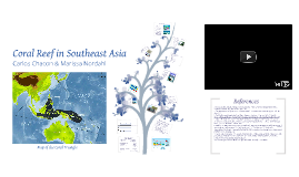 Copy of Coral Reef in Southeast Asia