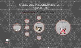 FASES DEL PROCEDIMIENTO PROBATORIO