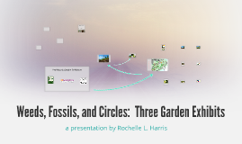 Weeds, Fossils, and Rivers:  Three Garden Exhibits