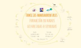 Copia de Relaciones fraternas en sistemas familiares con hijos/as bio
