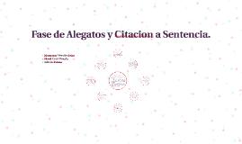 Fase de Alegatos y Citacion a Sentencia.