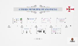 Copy of CÂMARA MUNICIPAL DE SÃO PAULO