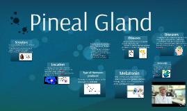 Penial Gland