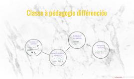 Classe à pédagogie différenciée